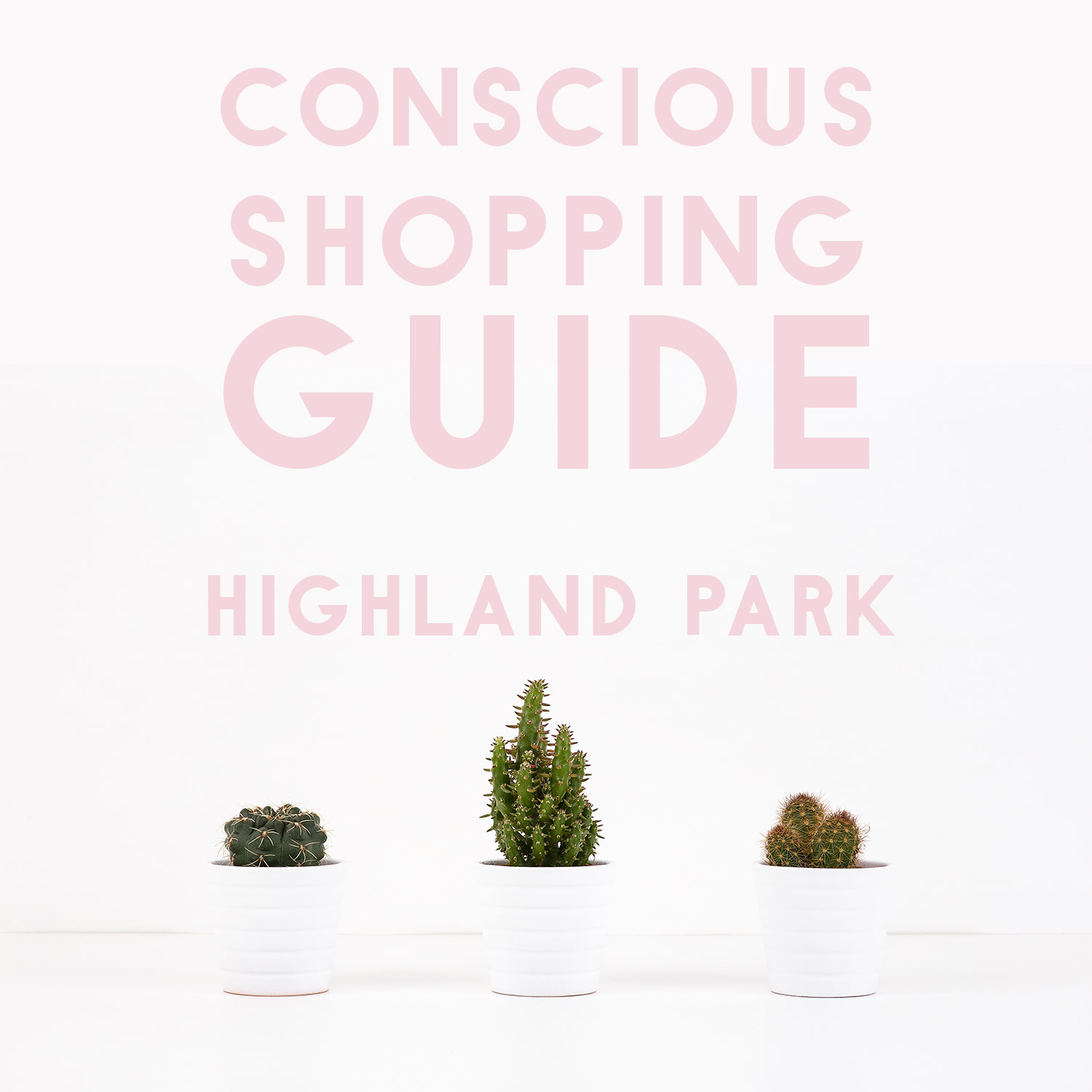 Conscious Shopping IRL: Highland Park, Los Angeles